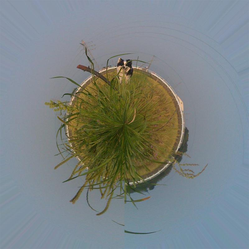 Photoshopで360度パノラマ写真に挑戦してみました