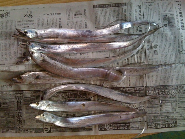 月刊釣りまとめ 2012-10
